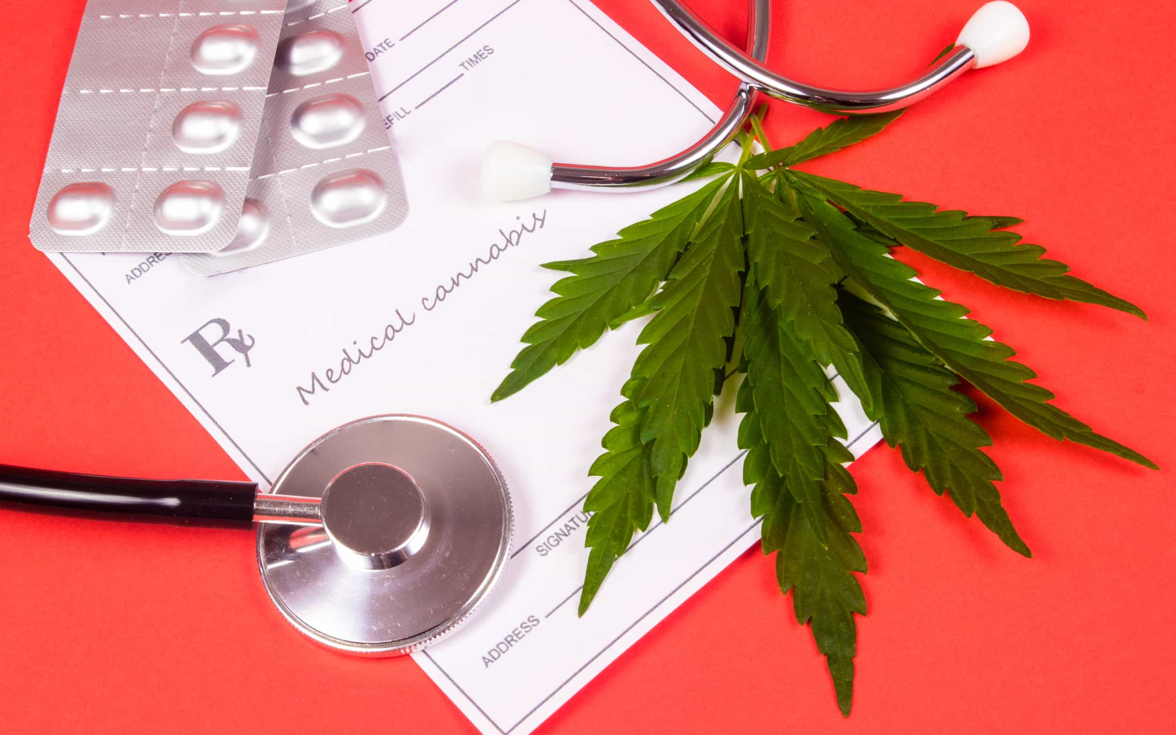 Marihuana Medyczna na Padaczkę, UprawaKonopi