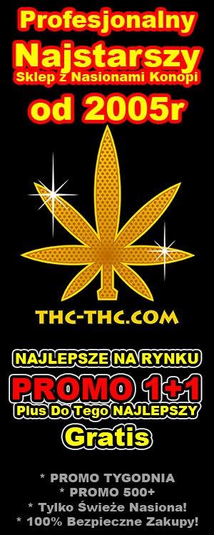 sprawdzone nasiona marihuany f1, thc-thc.com